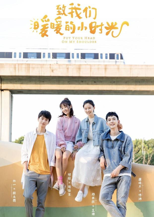 Top 10 phim Hoa Ngữ hot nhất nửa đầu năm 2019: Hoàng Cảnh Du được đồn có người chống lưng vẫn tụt hạng, vị trí số 1 chẳng ai ngờ - Ảnh 18.