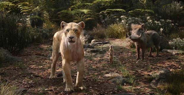 The Lion King thu về cả ngàn tỉ, nhưng Nhà Chuột có đang cạn chiêu khi liên tục làm phim remake? - Ảnh 4.