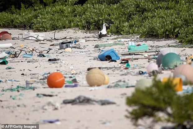 Phát hiện lượng rác nhựa khổng lồ tại hòn đảo thiên đường không người ở giữa Thái Bình Dương: 30 năm trôi qua trông vẫn như mới - Ảnh 2.