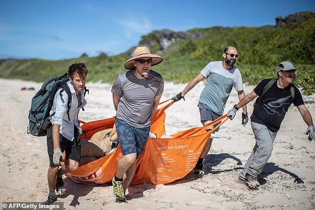 Phát hiện lượng rác nhựa khổng lồ tại hòn đảo thiên đường không người ở giữa Thái Bình Dương: 30 năm trôi qua trông vẫn như mới - Ảnh 3.