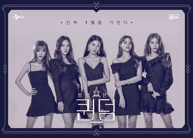 MAMAMOO, Park Bom... gây tranh cãi khi tham gia show mới: Cuộc chiến giữa các nhóm nữ hay fandom? - Ảnh 1.