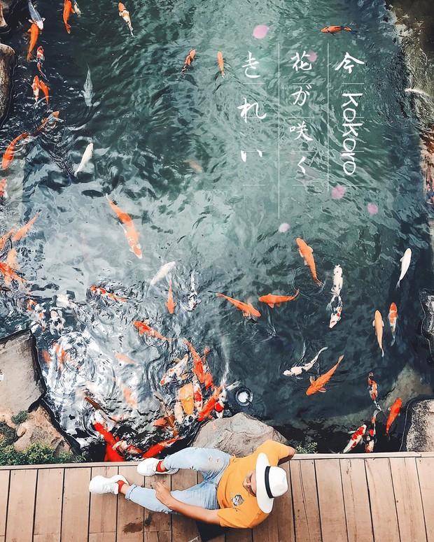 """Lên Đà Lạt làm bạn với cá Koi, Kỳ Duyên và Minh Triệu khiến fan """"ngất lịm"""" trước quán cafe style Nhật cực hot này! - Ảnh 14."""