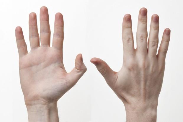 Khoa học nói rằng 14 bộ phận trên cơ thể sẽ hé lộ trí thông minh của bạn - Ảnh 9.