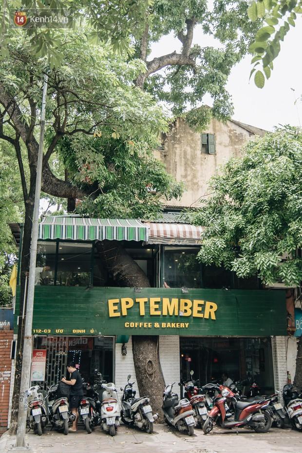 Kỳ lạ cây xanh mọc xuyên những căn nhà trong khu tập thể 60 năm tuổi ở Hà Nội - Ảnh 6.