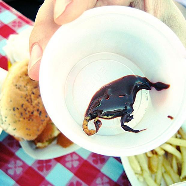 Những món ăn hội chợ của người Mỹ dị thứ hai không ai dám nhận thứ nhất - Ảnh 6.