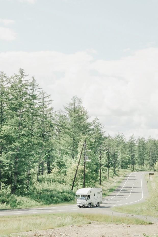 Loạt trải nghiệm mùa hè đỉnh như anime Nhật Bản: Bắt bọ cánh cứng, ngắm đom đóm trong rừng và ăn kem cho đến khi nào nổ não thì thôi! - Ảnh 1.