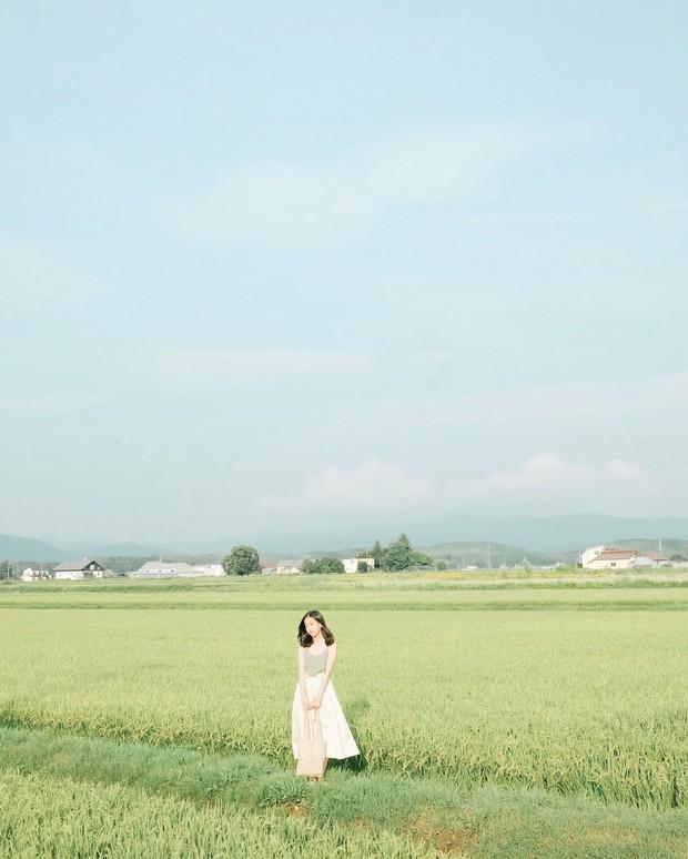 Loạt trải nghiệm mùa hè đỉnh như anime Nhật Bản: Bắt bọ cánh cứng, ngắm đom đóm trong rừng và ăn kem cho đến khi nào nổ não thì thôi! - Ảnh 5.