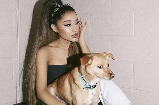 Nữ hoàng yêu sách Ariana Grande: fan chờ đến nửa đêm vẫn hủy show không lý do, cạch mặt cả Grammy vì không vừa ý - Ảnh 1.