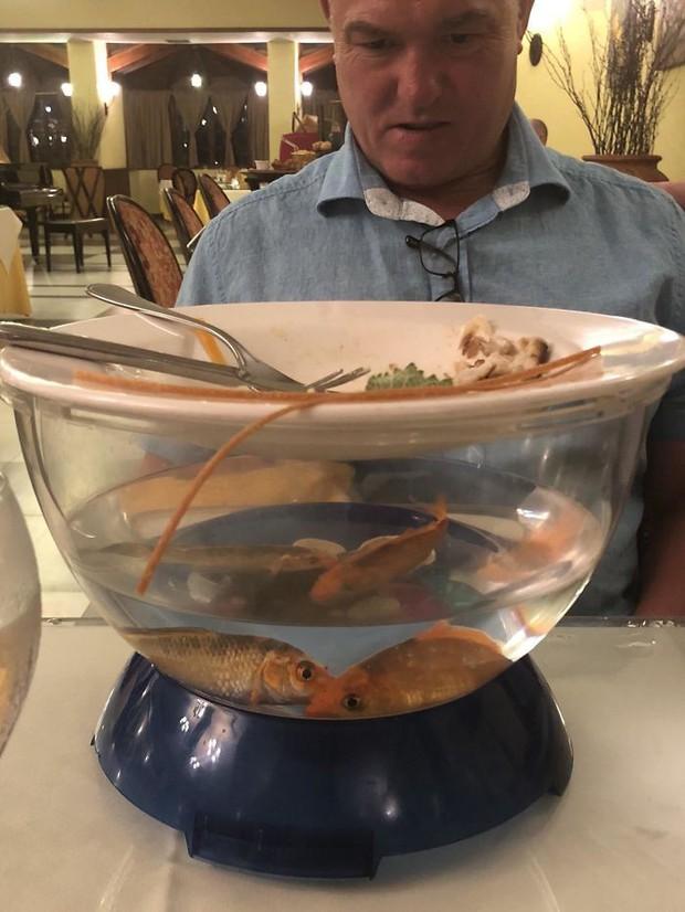 Muôn vàn tội ác trang trí đồ ăn: Từ lấy giầy đựng món khai vị đến đặt thức ăn trong bồn tiểu khiến thực khách phải rùng mình - Ảnh 15.