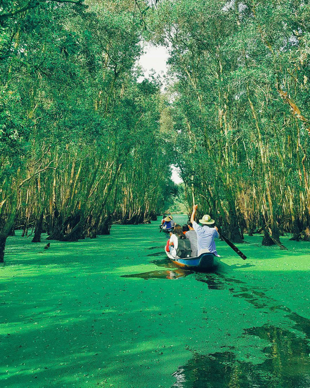 Lên hình siêu ảo 4 khu rừng tràm nổi đình đám ở miền Tây, liệu ngoài đời có đẹp như trên ảnh? - Ảnh 8.