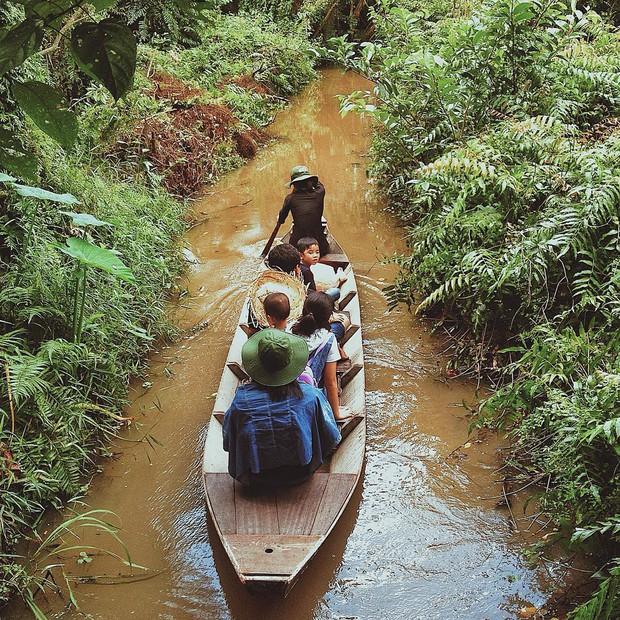 Lên hình siêu ảo 4 khu rừng tràm nổi đình đám ở miền Tây, liệu ngoài đời có đẹp như trên ảnh? - Ảnh 28.