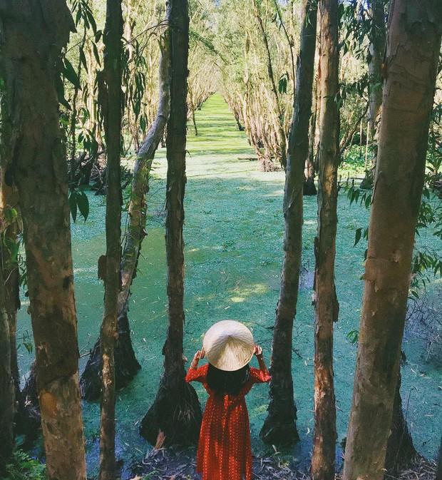 Lên hình siêu ảo 4 khu rừng tràm nổi đình đám ở miền Tây, liệu ngoài đời có đẹp như trên ảnh? - Ảnh 12.