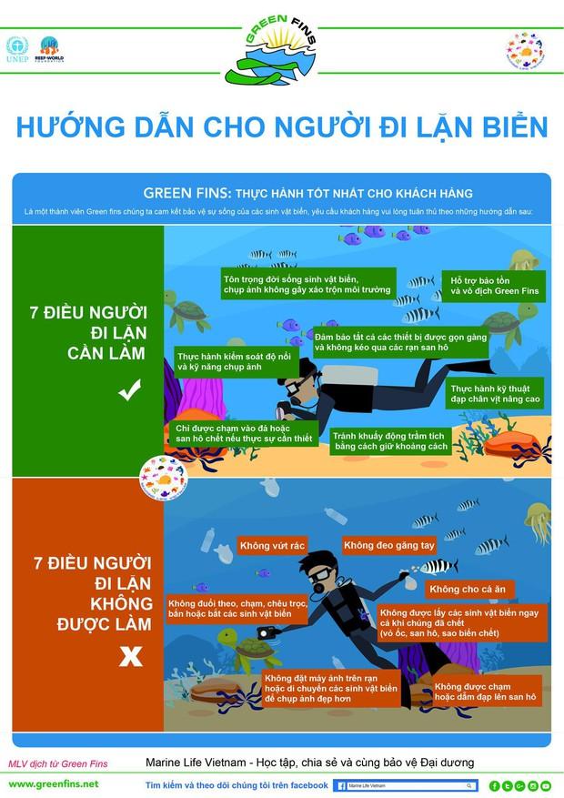 Tổ chức Sinh vật biển Việt Nam nói về việc đặt bê tông lên rạn san hô trong Cuộc đua kỳ thú và những quy tắc mà người lặn phải nhớ - Ảnh 4.