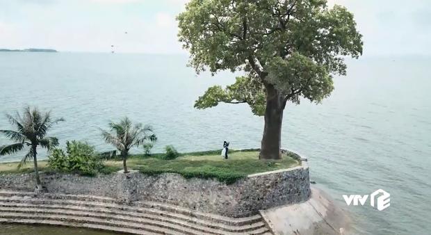 Úi, spotlight gây chú ý nhất Về Nhà Đi Con tập cuối chính là cái cây giả đứng sượng sùng cạnh Thư - Vũ! - Ảnh 3.