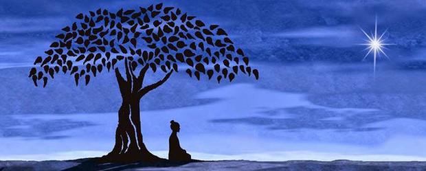 10 thói quen đem tới trí tuệ cho cuộc sống, làm được đến điều cuối cùng thì cuộc đời nở hoa - Ảnh 1.