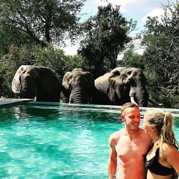 Dân mạng khóc thét với trải nghiệm tắm cùng voi trong bể bơi khách sạn 5 sao ở Nam Phi, mới nghe đã muốn chạy 8 hướng! - Ảnh 25.