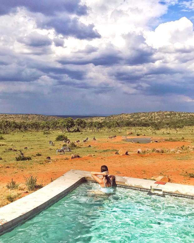 Dân mạng khóc thét với trải nghiệm tắm cùng voi trong bể bơi khách sạn 5 sao ở Nam Phi, mới nghe đã muốn chạy 8 hướng! - Ảnh 13.