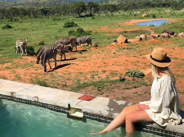 Dân mạng khóc thét với trải nghiệm tắm cùng voi trong bể bơi khách sạn 5 sao ở Nam Phi, mới nghe đã muốn chạy 8 hướng! - Ảnh 14.
