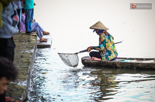 Ảnh: Bất lực vì cá phóng sinh bị vớt ngay khi vừa thả xuống sông Sài Gòn ngày Vu Lan - Ảnh 19.