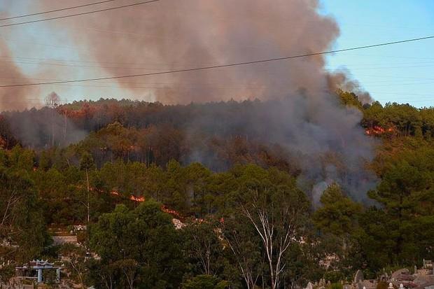 Cháy lớn ở núi Ngũ Phong - Huế, đe dọa an toàn lưới điện - Ảnh 1.