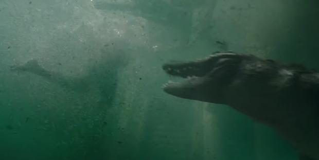 Phim rạp cuối tuần: Trai đẹp đủ món từ đam mỹ đến cá sấu tử thần thơm ngon hú hồn - Ảnh 11.