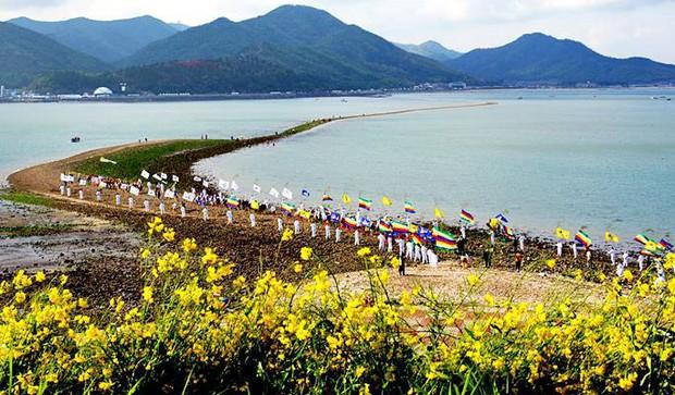 Đến hẹn lại lên: Con đường giữa biển Hàn Quốc 2 năm mới xuất hiện 1 lần, kỳ bí như vậy nhưng người dân vẫn thản nhiên… ăn mừng - Ảnh 9.