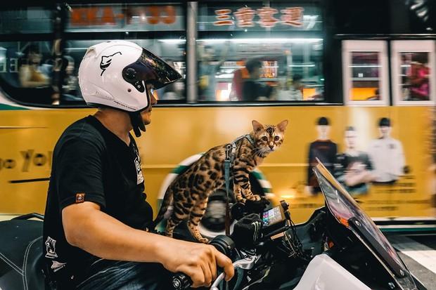 """Travel blogger điển trai tiết lộ 2 lý do không nên du lịch Đài Loan, vì đi rồi sẽ """"nghiện"""" chẳng muốn về nữa! - Ảnh 13."""