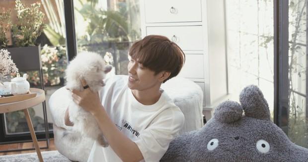 JSOL chứng minh: Đẹp trai hát hay thôi chưa đủ, phải quay clip hát cùng với cún cưng mới là chân ái của chị em - Ảnh 2.