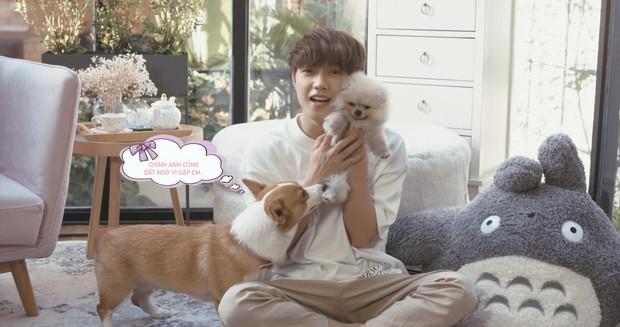 JSOL chứng minh: Đẹp trai hát hay thôi chưa đủ, phải quay clip hát cùng với cún cưng mới là chân ái của chị em - Ảnh 5.