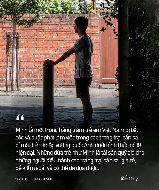 Cuộc đời nô lệ của cậu bé người Việt bị bán sang Anh trồng cần sa: Bị bắt cóc, tấn công tình dục và những sang chấn tâm lý kinh hoàng - Ảnh 1.