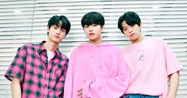 """Không phải """"dự án trong mơ"""" BY9, đây mới là những trainee bị loại đầu tiên hiên ngang debut hậu Produce X 101! - Ảnh 1."""