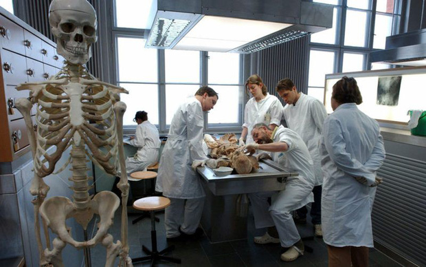 Bi kịch chuyện hiến xác cho khoa học: Gia đình đồng ý hiến tặng, để rồi đau lòng khi phát hiện cái xác được dùng để làm gì - Ảnh 5.