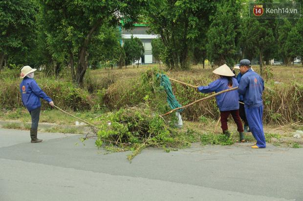 """Rắn bủa vây một chung cư ở Hà Nội, khu vui chơi bị """"bỏ hoang"""" vì người dân sợ rắn tấn công - Ảnh 3."""