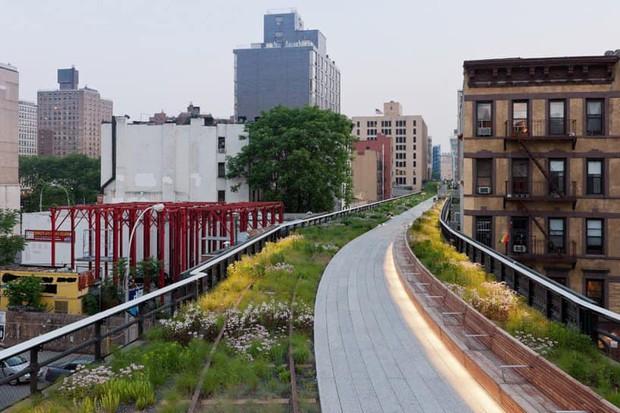 Đường sắt Cát Linh - Hà Đông bỗng hóa hoa vàng trên cỏ xanh qua bàn tay photoshop, thêm loạt lựa chọn bất ngờ được dân mạng ủng hộ rào rào - Ảnh 8.