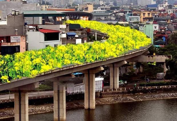 Đường sắt Cát Linh - Hà Đông bỗng hóa hoa vàng trên cỏ xanh qua bàn tay photoshop, thêm loạt lựa chọn bất ngờ được dân mạng ủng hộ rào rào - Ảnh 1.