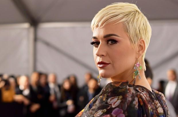 Học vấn dàn sao US-UK: Katy Perry, Rihanna, Simon Cowell... bỏ học từ năm 15, 16 tuổi vẫn trở thành tỷ phú với gia tài hàng trăm triệu USD - Ảnh 2.