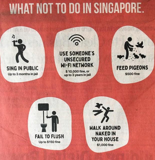 22 điều kì lạ mà rất có thể bạn sẽ gặp khi đi du lịch ở Singapore, biết trước thì sẽ đỡ ngơ ngác hơn nè - Ảnh 1.