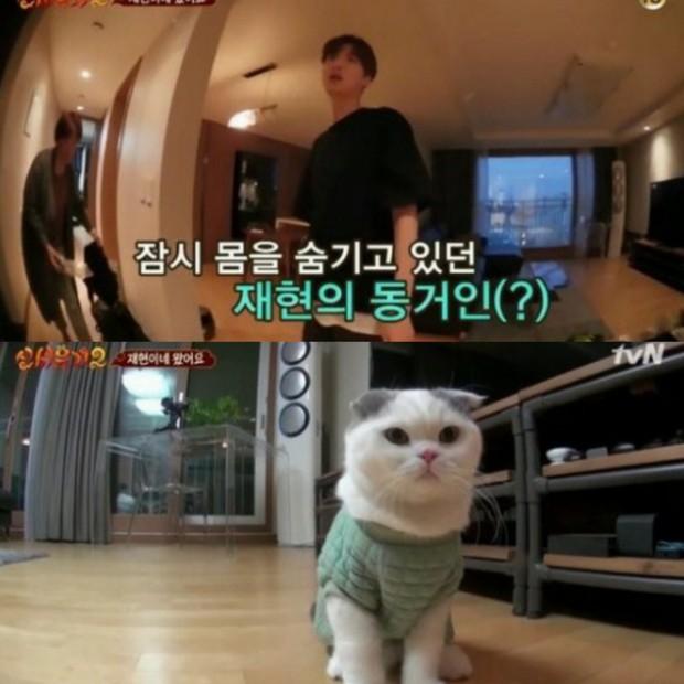 Khối tài sản của Goo Hye Sun - Ahn Jae Hyun: Chồng liệu có kém xa vợ, khó khăn không mà phải tranh chấp gay gắt? - Ảnh 14.