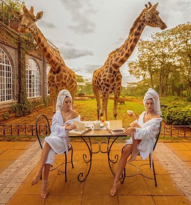 """Khách sạn nổi tiếng nhất châu Phi vì cho du khách ăn sáng cùng hươu cao cổ: Dễ thương thật, nhưng cái giá thì """"chát"""" quá! - Ảnh 18."""