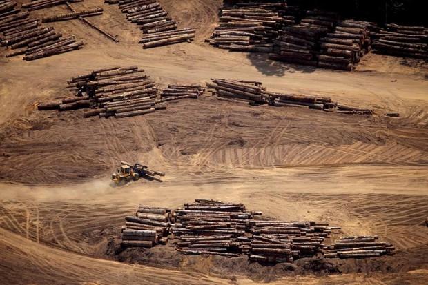 Loạt ảnh gây sốc về rừng Amazon bùng cháy với tốc độ kỷ lục: Khói có thể nhìn thấy từ ngoài không gian, các thành phố bị bao phủ mù mịt như tận thế - Ảnh 17.