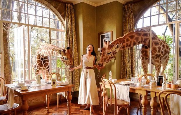 """Khách sạn nổi tiếng nhất châu Phi vì cho du khách ăn sáng cùng hươu cao cổ: Dễ thương thật, nhưng cái giá thì """"chát"""" quá! - Ảnh 12."""