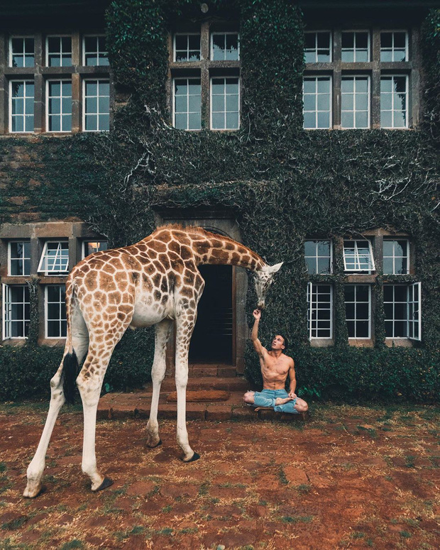 """Khách sạn nổi tiếng nhất châu Phi vì cho du khách ăn sáng cùng hươu cao cổ: Dễ thương thật, nhưng cái giá thì """"chát"""" quá! - Ảnh 10."""