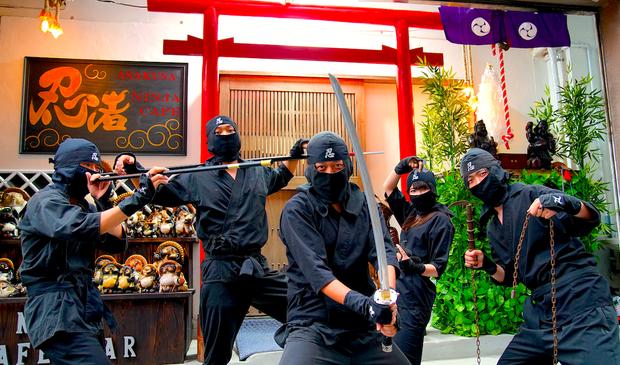 """Nhật Bản có món mì ramen nghe là sợ """"ướt quần"""": nấu bằng cá ăn thịt người piranha - Ảnh 4."""