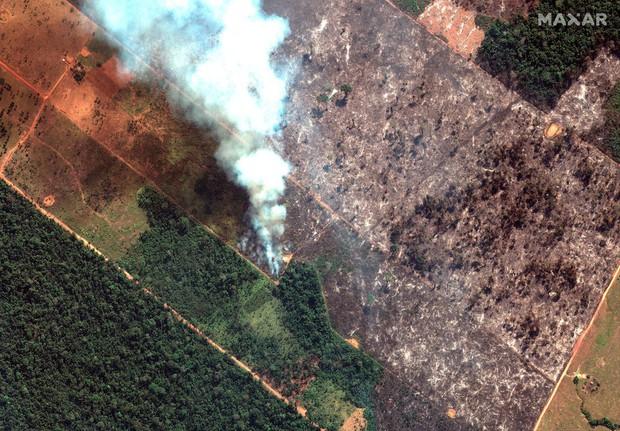 Thảm họa của thế kỉ 21: Rừng Amazon có thể tự dập lửa nhưng bị chính con người bức tử và sự trả thù của thiên nhiên sẽ vô cùng tàn khốc - Ảnh 1.