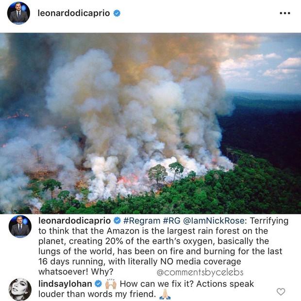 Kêu gọi sự quan tâm về cháy rừng Amazon nhưng bị Lindsay Lohan hỏi khó, Leonardo DiCaprio đáp trả ngay bằng bài viết 2 triệu like - Ảnh 1.