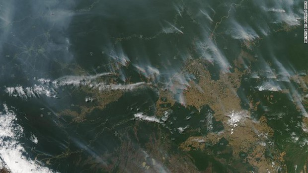 Tại sao rừng Amazon cháy đến tận 3 tuần chúng ta mới nhận ra sự việc đã trở nên nghiêm trọng đến mức nào? - Ảnh 1.