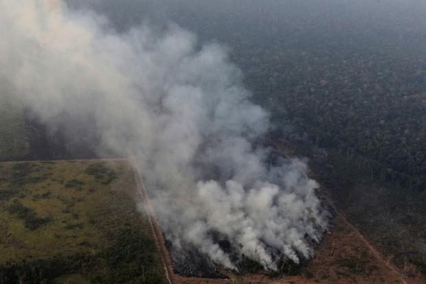 Tổng thống Brazil huy động quân đội dập tắt cháy rừng Amazon - Ảnh 1.