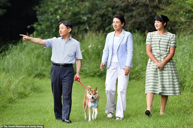 Không còn tự dìm hàng mình, Công chúa Nhật Bản bỗng dưng tỏa sáng trong lần xuất hiện mới nhất khiến ai cũng ngỡ ngàng - Ảnh 3.