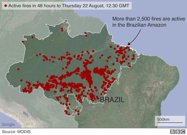 Tại sao rừng Amazon cháy đến tận 3 tuần chúng ta mới nhận ra sự việc đã trở nên nghiêm trọng đến mức nào? - Ảnh 3.