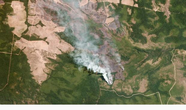 Thảm cảnh của thổ dân trước vụ cháy rừng Amazon tàn khốc nhất lịch sử: Chúng tôi đã khóc khi dập lửa, nhiều gia đình mất hết tất cả - Ảnh 3.